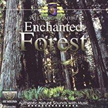 Enchanted Forest - Relaxing Nature