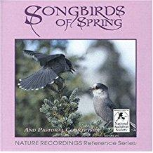 Songbirds of Spring - Nature Recordings