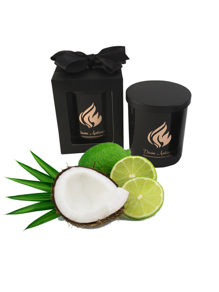 Coconut Lime Scented Soy Candle | Oxford Collection