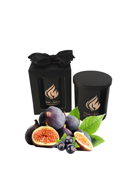 Fig & Cassis Scented Soy Candle | Oxford Collection edited