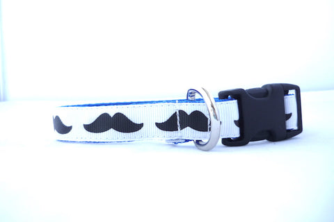 "3/4"" clasp collar- for the smaller pups- moustaches"
