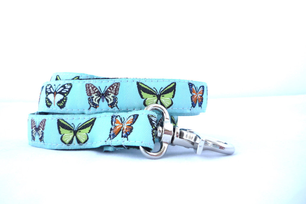 "3/4"" wide 4ft/ 6ft butterfly dog leash"