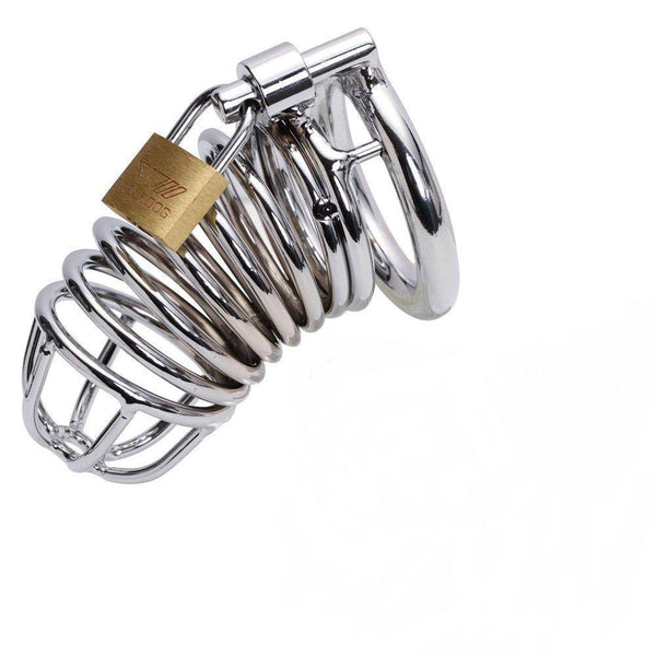 Buy ItspleaZure Metal Hoop Cock Cage With Lock & Key for  at itspleaZure