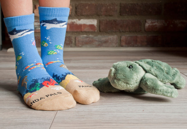Shark sock with Turtle Lifestyle - Sock Panda