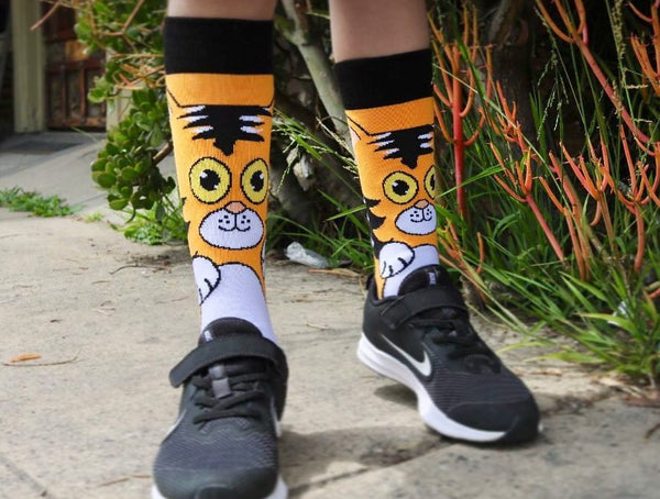 Orange Cat Lifestyle - Sock Panda