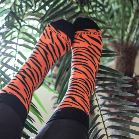 Tiger Stripe Lifestyle - Sock Panda