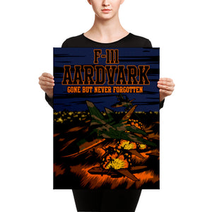F-111 Aardvark (The Pig) Canvas - Mil-Spec Customs