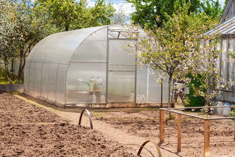 How to build your own greenhouse? Here are 5 steps