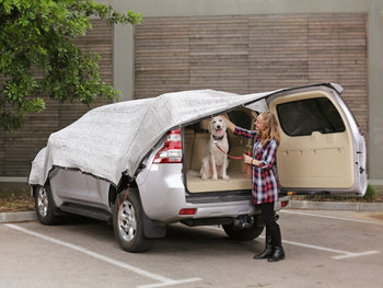 Be Cool Solutions Car Shade