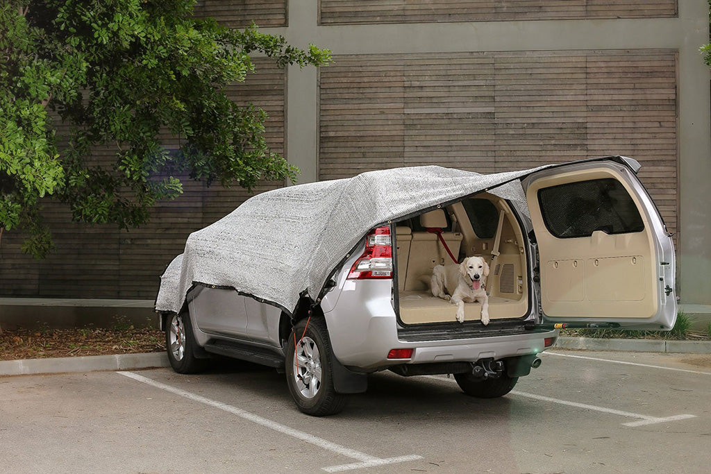 Shade solution for dogs