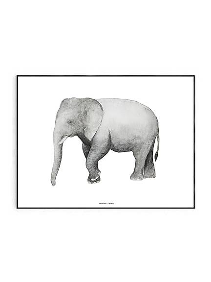 Elephant Print 50 x 70cm (PRE-ORDER JUNE) - Hello Little Birdie