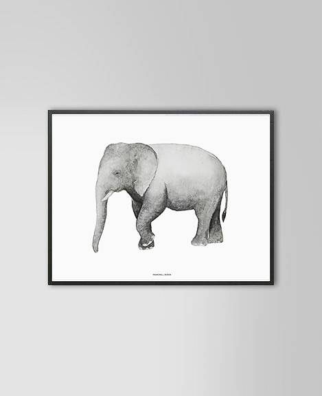Elephant Print 40 x 50cm - Hello Little Birdie