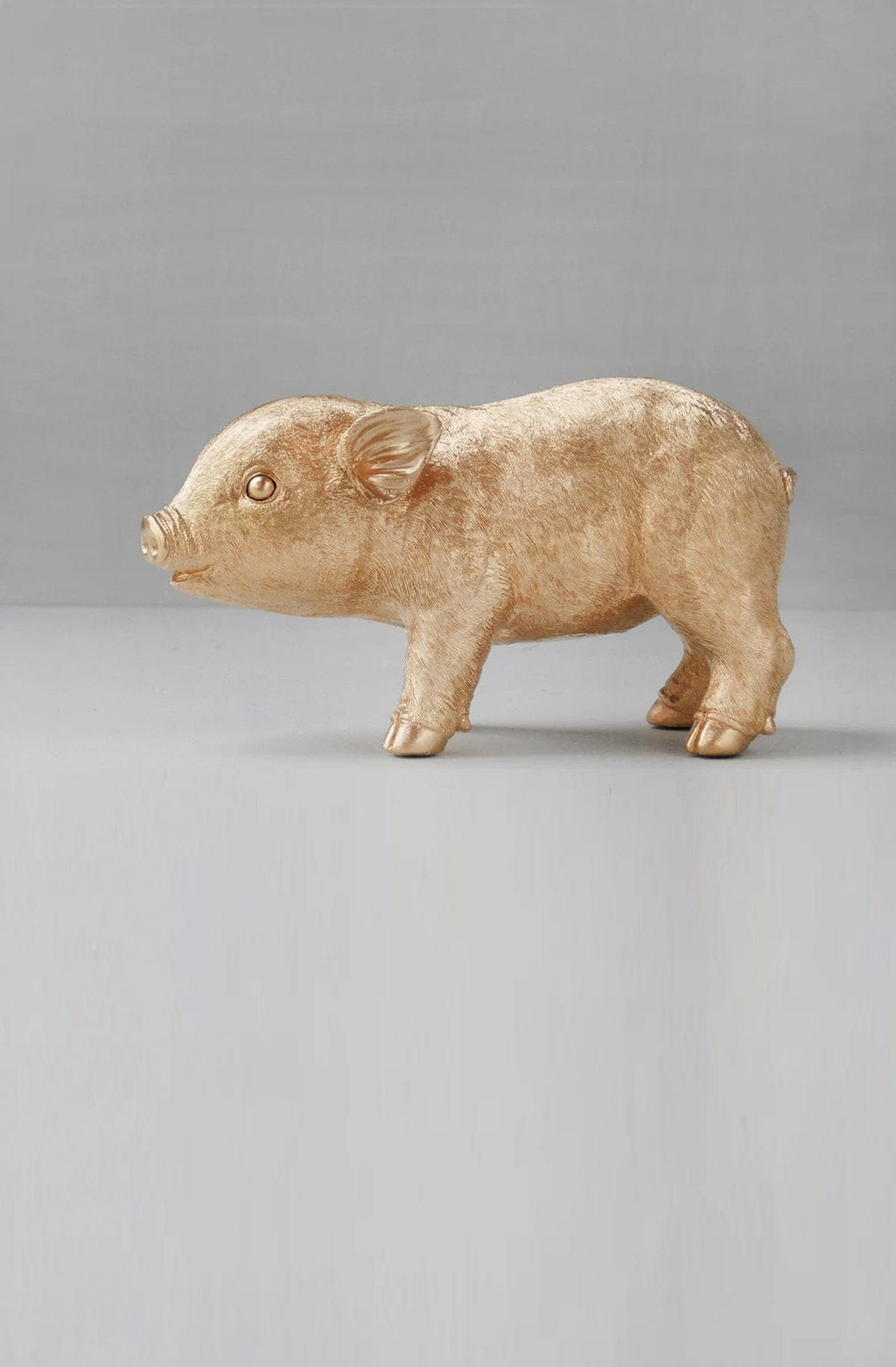WHITE MOOSE PIG MONEY BOX, GOLD - Hello Little Birdie