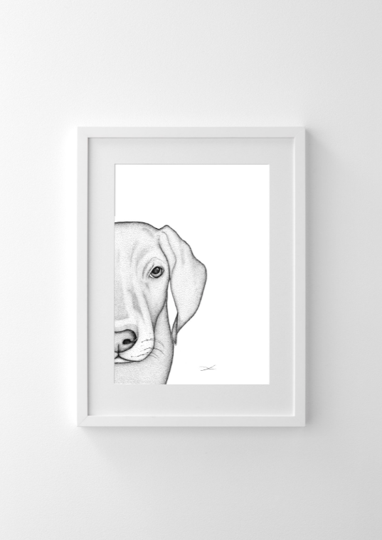 Dots By Donna, Whitey The Weimaraner - Hello Little Birdie