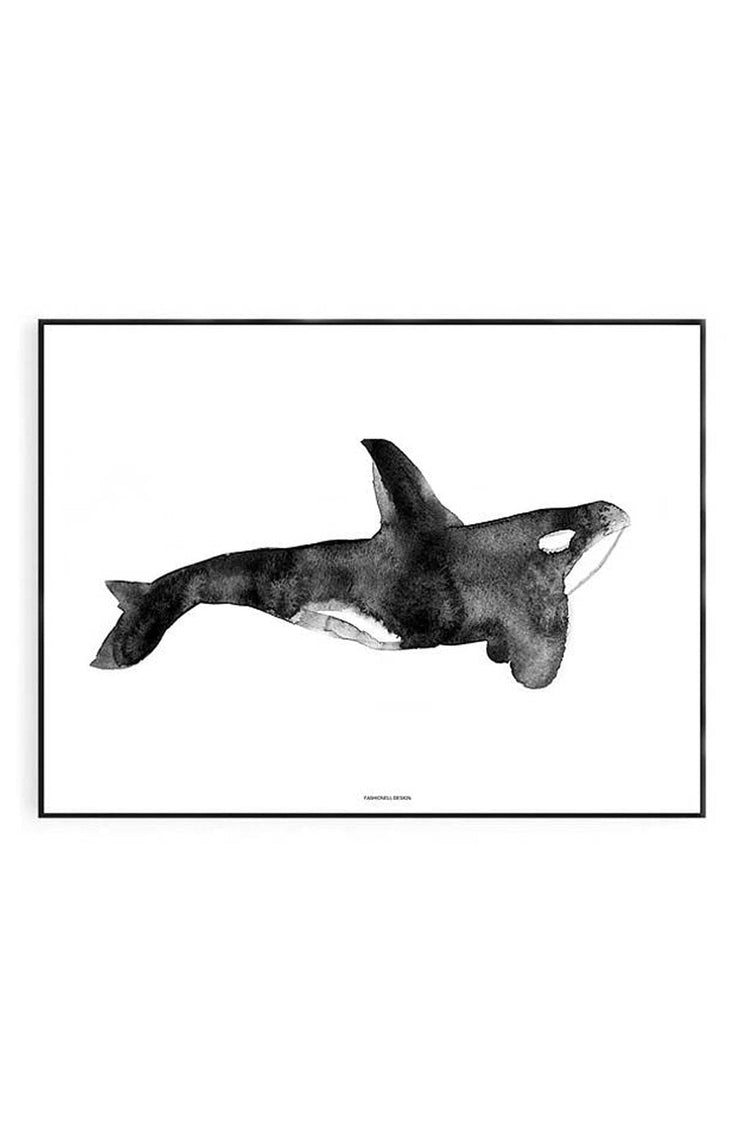 Killer Whale Print 50 x 70cm - Hello Little Birdie