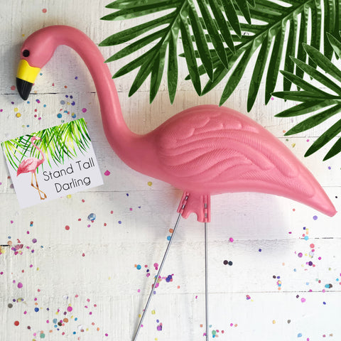 Pink Flamingo with Stand Tall Darling Card