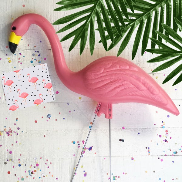 Pink Flamingo with Pink Flamingo Greeting Card