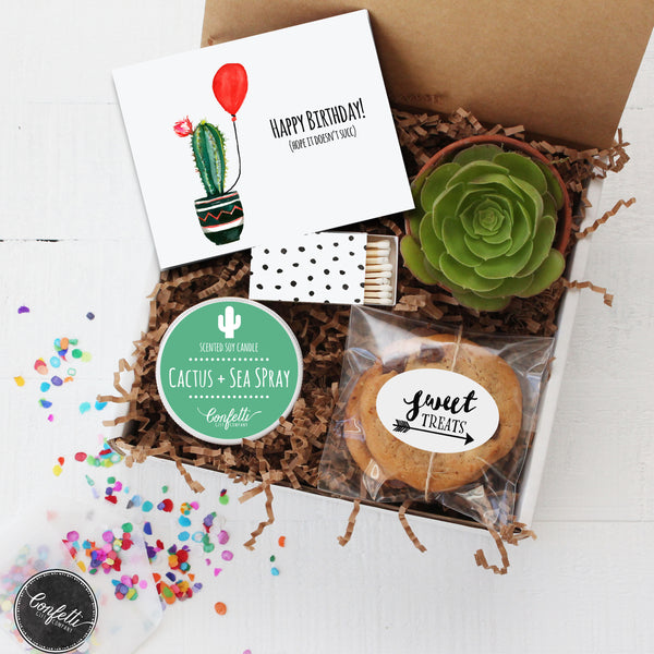 Happy Birthday Succulent Gift Box
