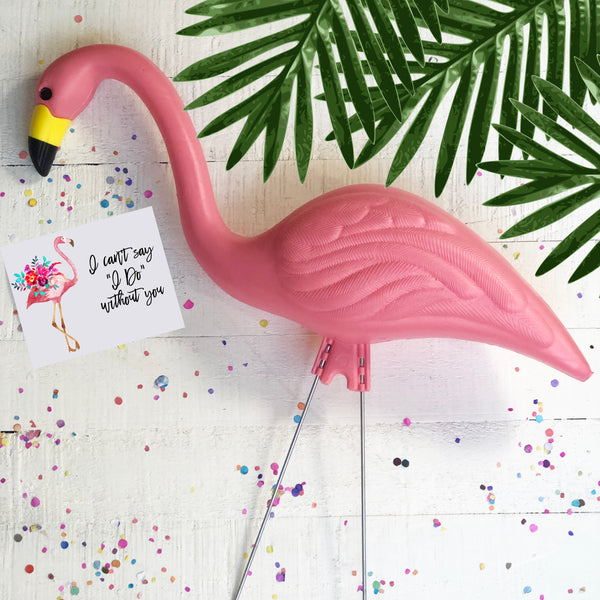 Pink Flamingo with I Can't Say I Do Without You Card