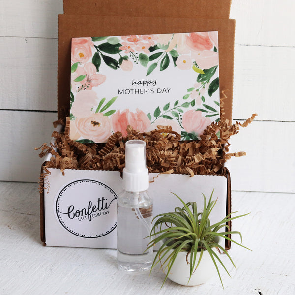 Mother's Day Air Plant Gift Box