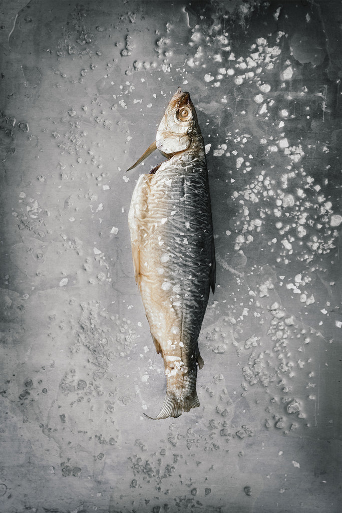 Salted Fish, Limited Print