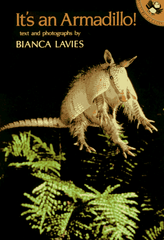 It's An Armadillo! Book Cover