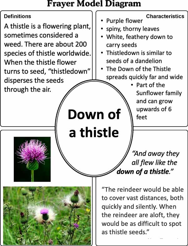 Down of a Thistle image