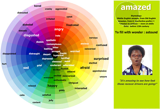 Emotions Color Wheel