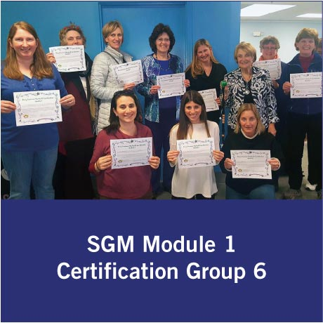 SGM Certification Group 6