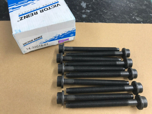 Ford Focus ST170 2.0 Zetec Victor Reinz Head bolts 14-32018-01