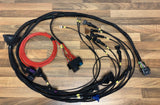 Link ECU G4X MONSOON X ST170 Wiring Engine Loom & ECU Package