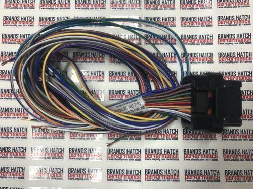 Link ECU G4 & G4+ 34 Way 400mm SHORT Terminated B Loom