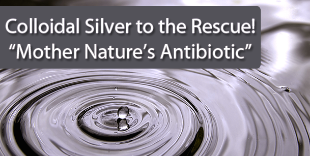 Colloidal Silver - Where can I purchase ?