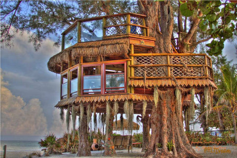 Holmes Beach tree house