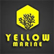 Yellow Marine