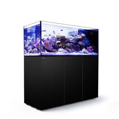 Red Sea Reefer Peninsula P650 Black