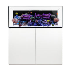 Waterbox Platinum Reef 130.4 - White