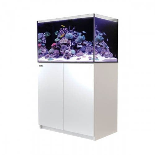 Red Sea Reefer 250 White