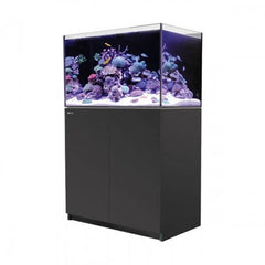 Red Sea Reefer 250 Black