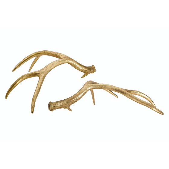 Golden Antlers, Set of 2
