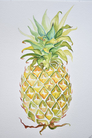 Watercolour - Pineapple