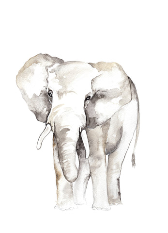Watercolour - Elephant