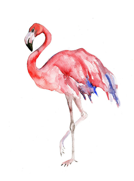 Watercolour - Flamingo