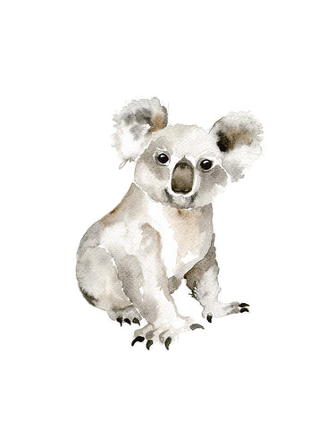 Watercolour - Koala
