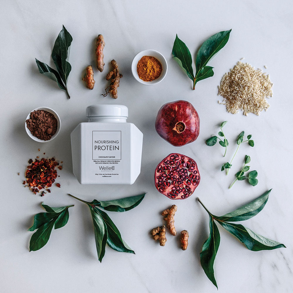 WelleCo Nourishing Plant Protein Ingredients