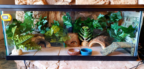 how to build a leopard gecko habitat