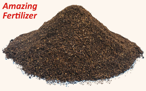 Black Soldier Fly Larvae Poop - Free Shipping