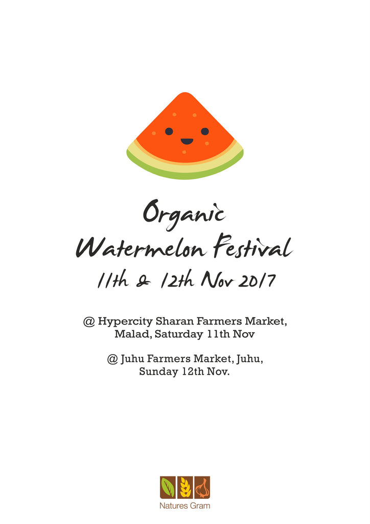 The story of our watermelons this November