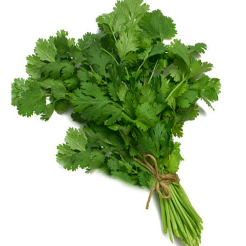 Dhania / Coriander - 1bunch