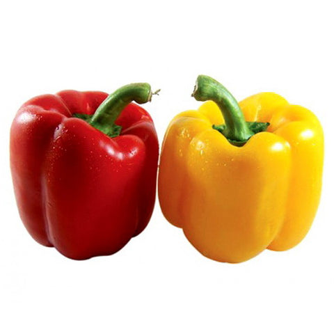 Yellow and Red Capsicum - 250 Gms